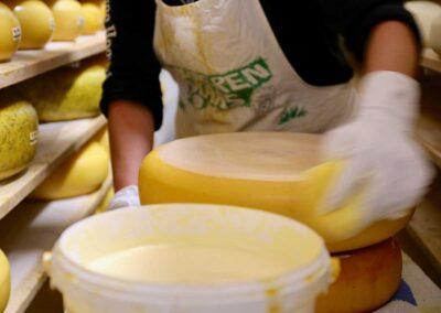 Kaasmakerij De Twee Hoeven